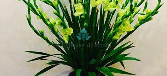Mẫu cắm hoa lay ơn đẹp