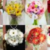 hoa cầm tay cô dâu bằng hoa đồng tiền